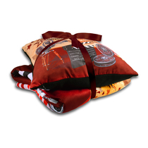 Pillow & Blanket Gift Set